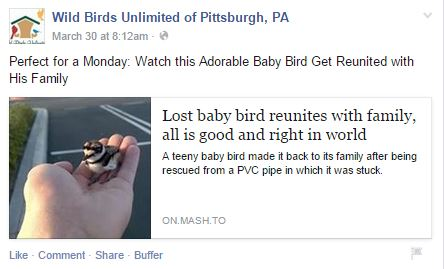 lost baby Wild Birds Unlimited of Pittsburgh, PA